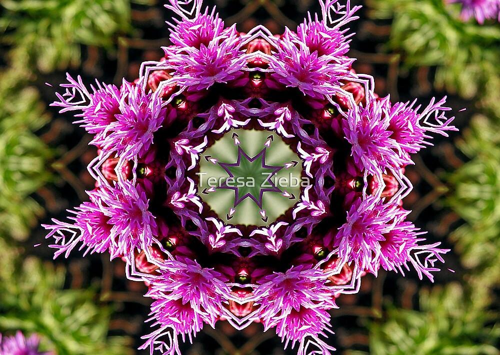 Purple Pattern by Teresa Zieba