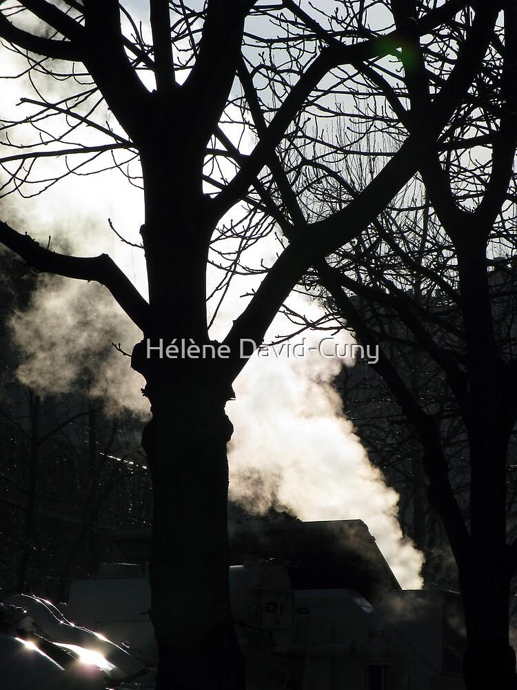 Smoke by Hélène David-Cuny