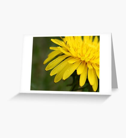 Leave Your Worries Behind Greeting Card