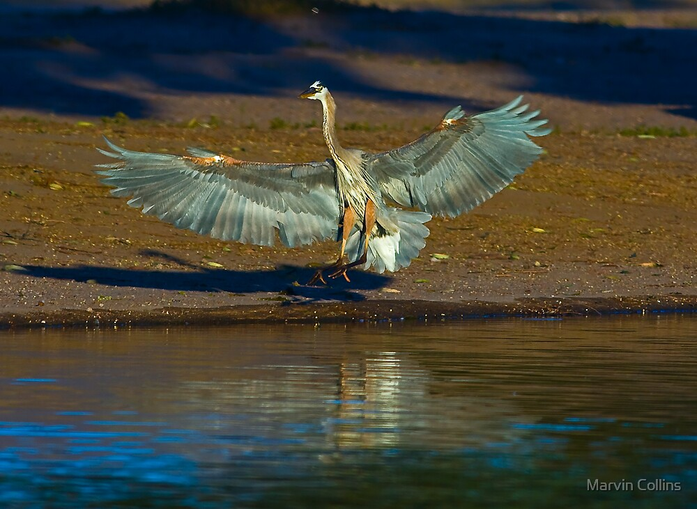 GBH Landing by Marvin Collins