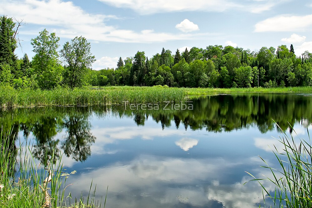 Whiteshell Reflections by Teresa Zieba