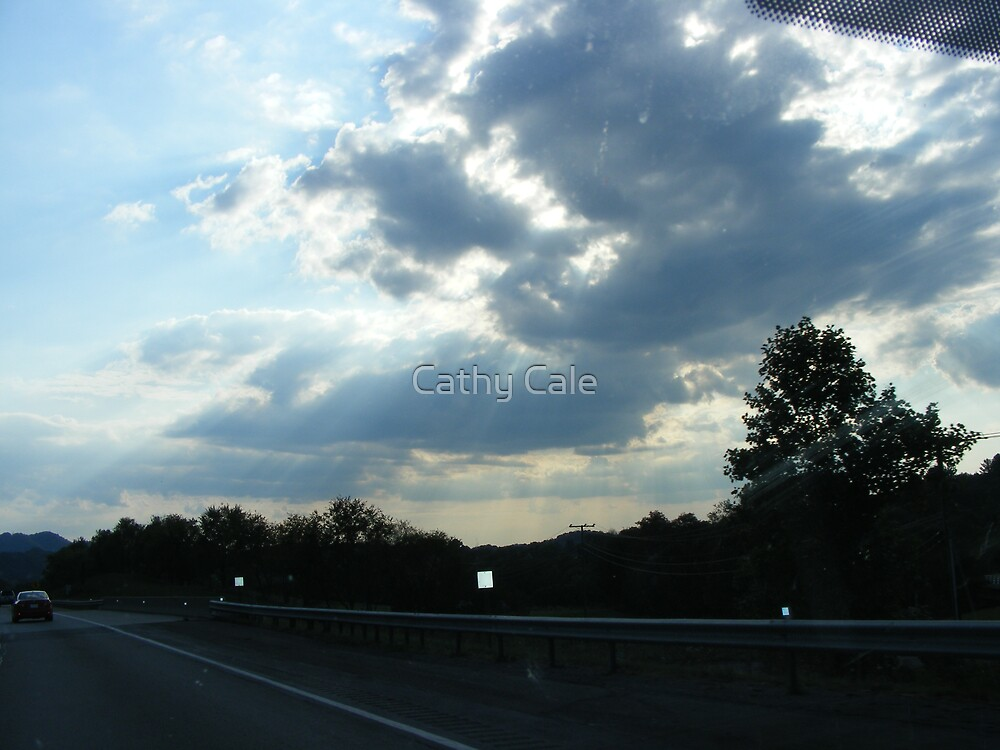 See The Rays!! by Cathy Cale