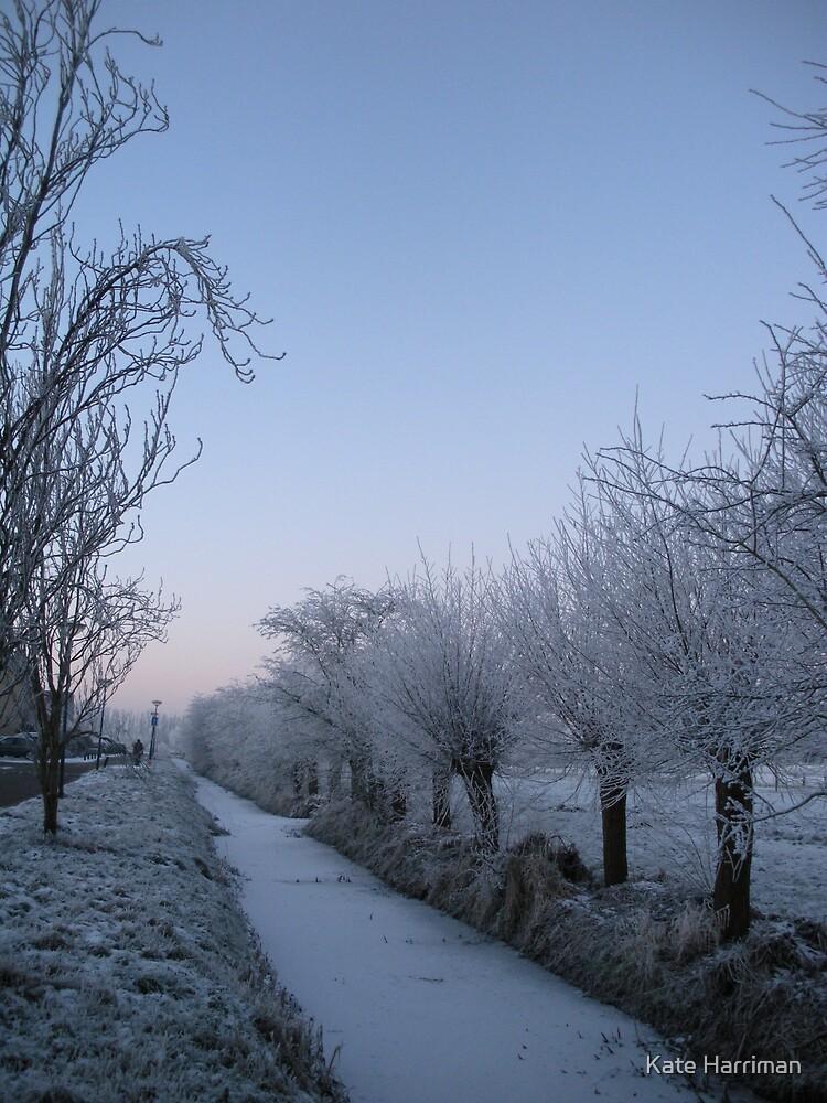 Winter in Langbroek, Holland by Kate Harriman
