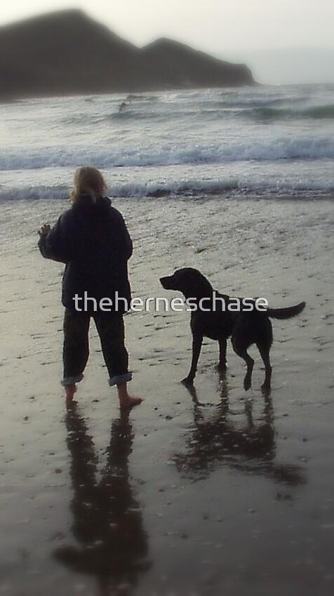 Beach Walk by theherneschase
