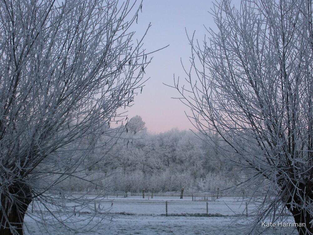 Frozen Field in Langbroek, Holland by Kate Harriman