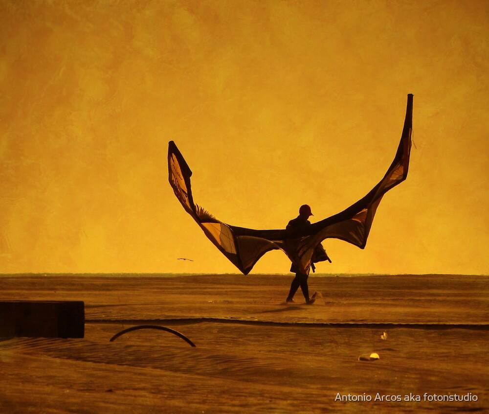 Wings. by Antonio Arcos aka fotonstudio