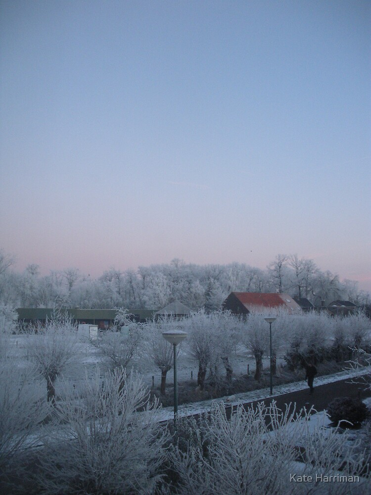 Holland Winter 2 by Kate Harriman