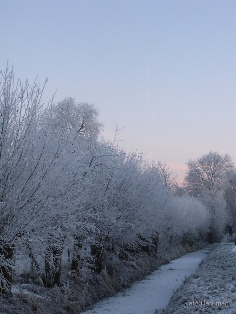 A cold morning in Langbroek, Holland by Kate Harriman