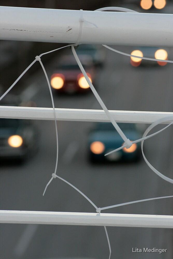 Catching Cars by Lita Medinger