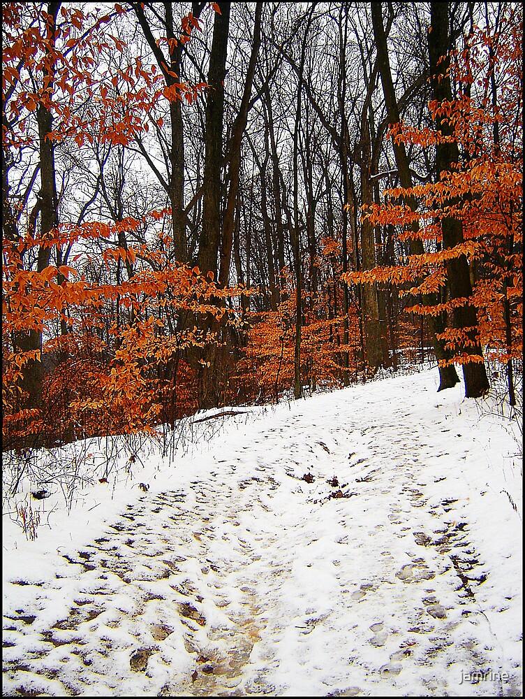 Rockhouse Trail by jamrine