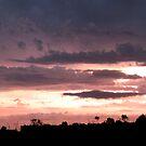 Guanaba Sunset by Kathie Nichols