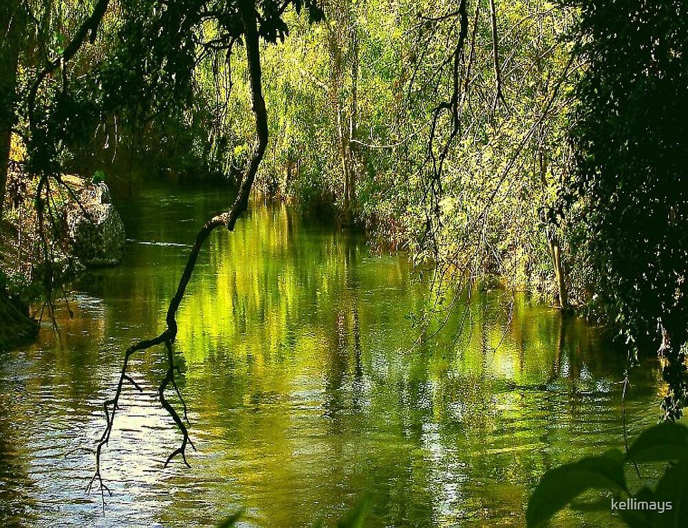San Antonio River up stream by kellimays