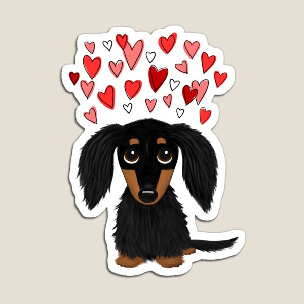 Black and Tan Longhaired Dachshund with Hearts Magnet