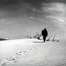 Death Valley #12 by Stephen Sheffield
