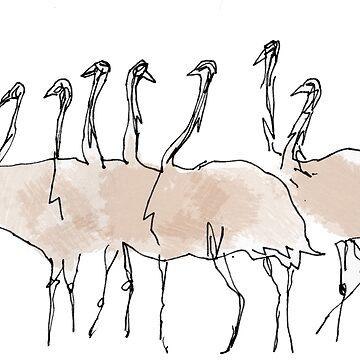 emus by mmawson