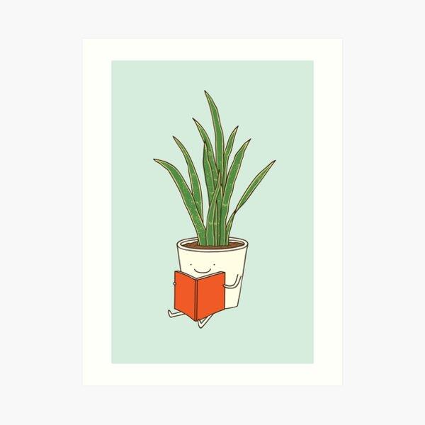 Zimmerpflanze Kunstdruck
