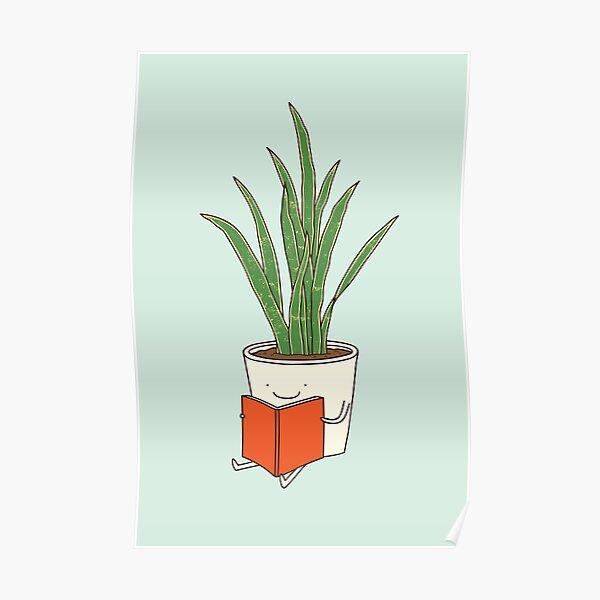 Zimmerpflanze Poster