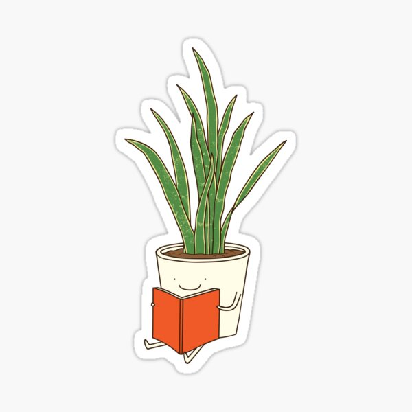 Indoor plant Sticker