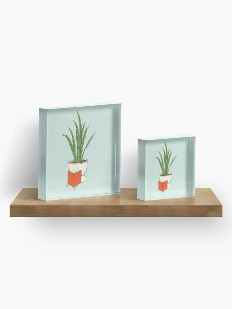 Alternate view of Indoor plant Acrylic Block