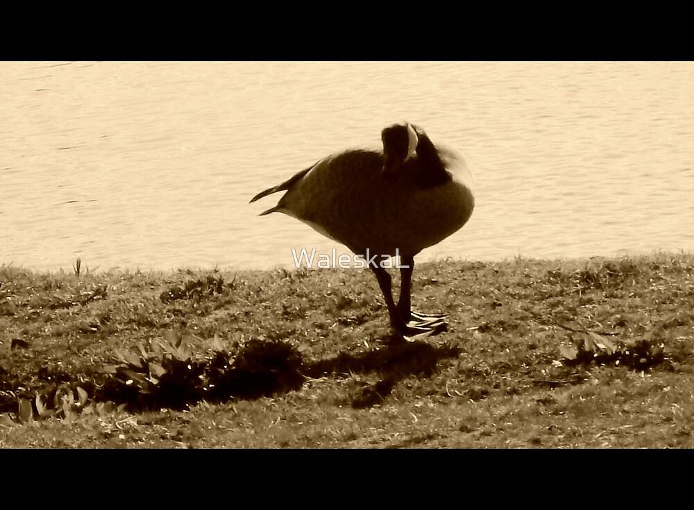 A very goose Model by WaleskaL