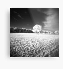 Holga Infrared Tree #7 Metal Print