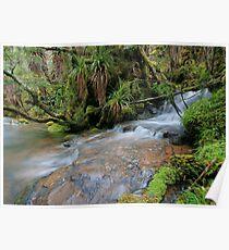 monotreme Creek Poster