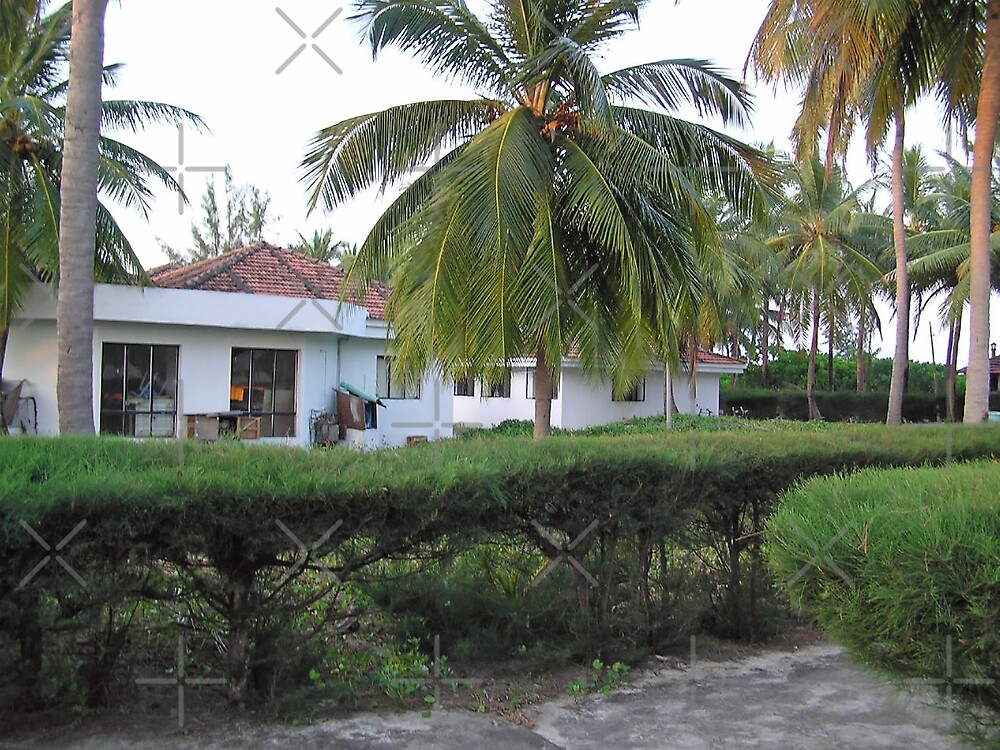 Guest cottages and coconut trees at Kadamat Island in the Lakshadweep by ashishagarwal74