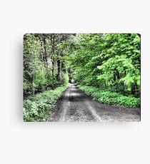 Green street in Meise-Wolvertem. Canvas Print