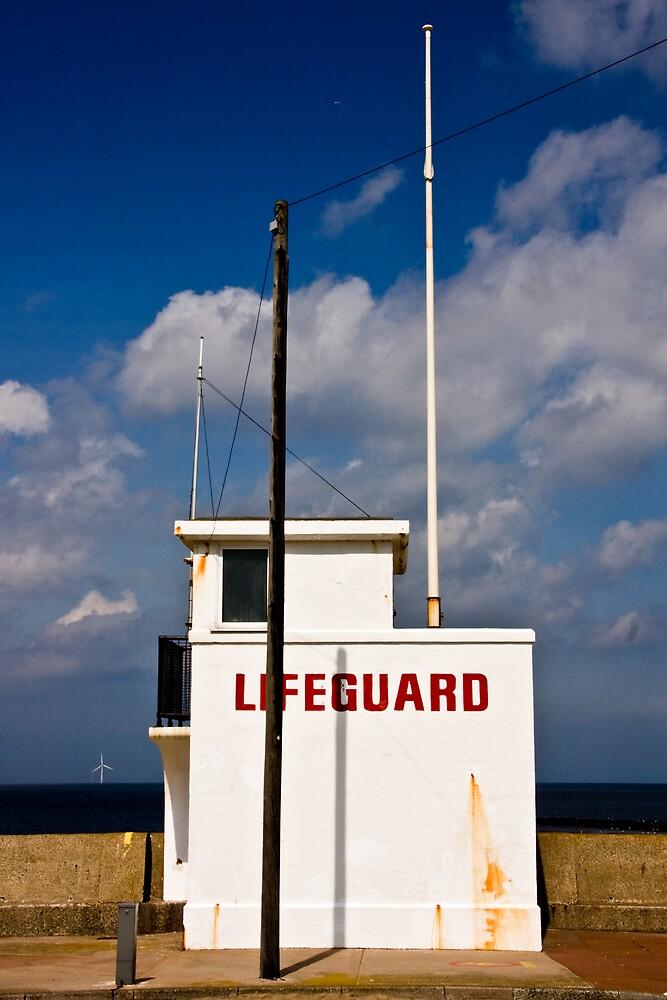 Lifeguard by Mark E. Coward