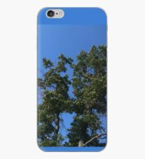 Sky Through The Trees iPhone Case