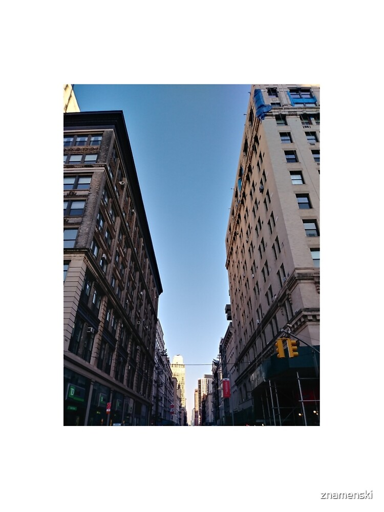 Tower block, High-rise building, Happiness, Building, Skyscraper, New York, Manhattan, Street, Pedestrians, Cars, Towers, morning, trees, subway, station, Spring, flowers, Brooklyn by znamenski