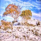 Chilling Out - Snowy Mountains NSW Australia - SQUARE FORMAT by Philip Johnson