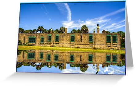 The back of Atalaya by TJ Baccari Photography