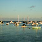 Cape Cod Harbor  by Linda Jackson