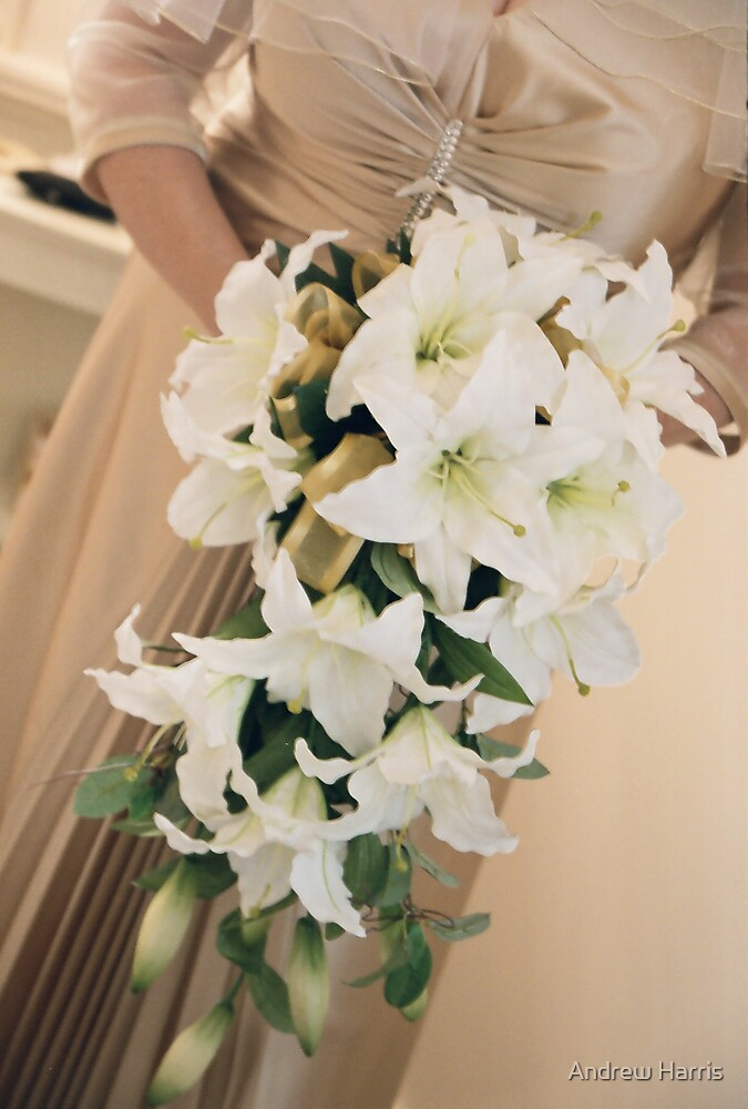 Bride's Flowers by Andrew Harris