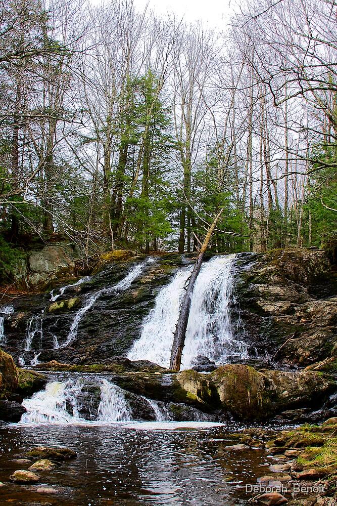 Rural and Rustic Vermont by Deborah  Benoit