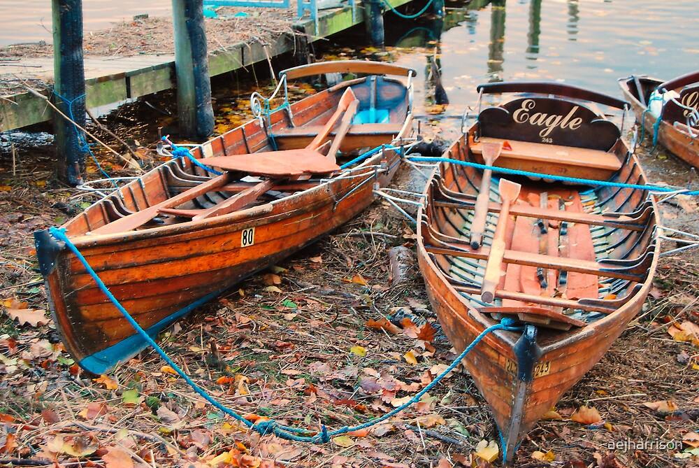 Two Rowing Boats by aejharrison