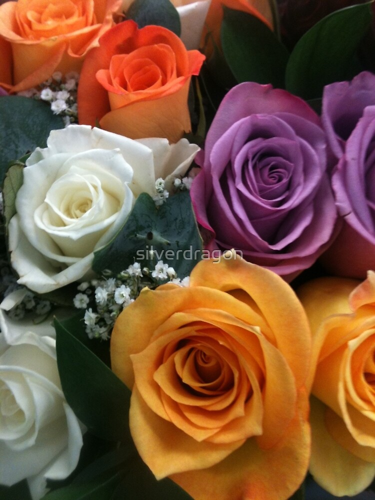 Colorful Rose Bouquet by silverdragon