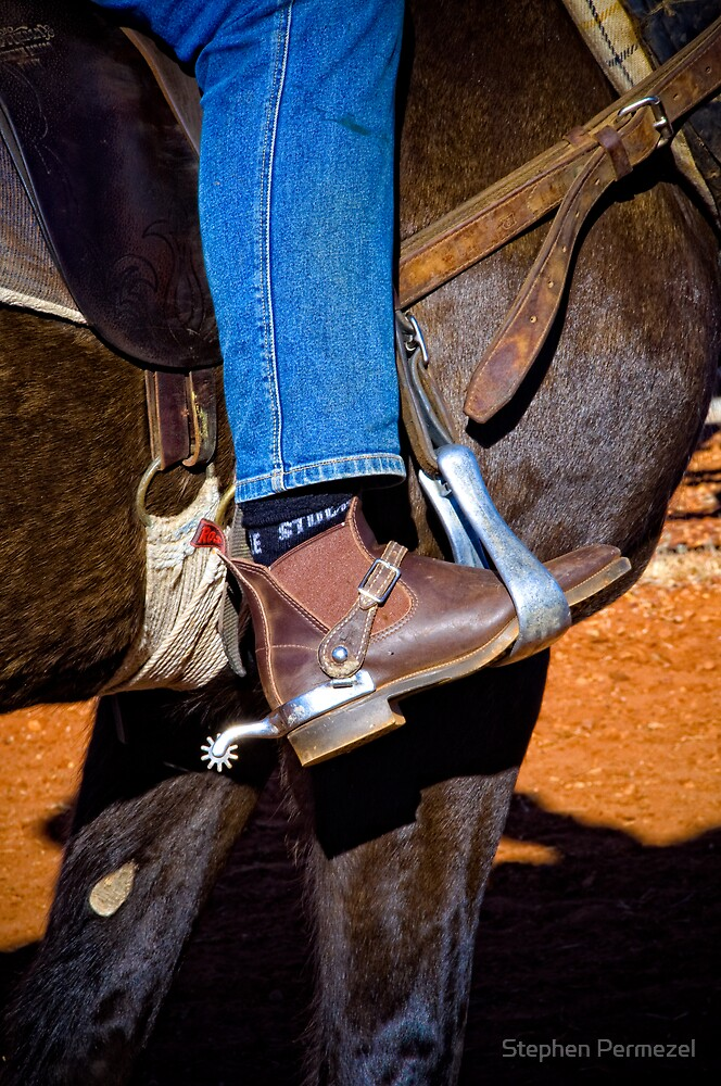 Stirrup and Spur - Marla, South Australia by Stephen Permezel