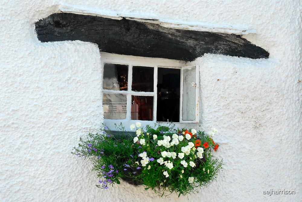 Cottage Window by aejharrison