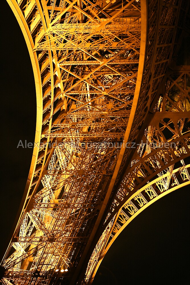 Eiffel Tower leg by Alexander Meysztowicz-Howen