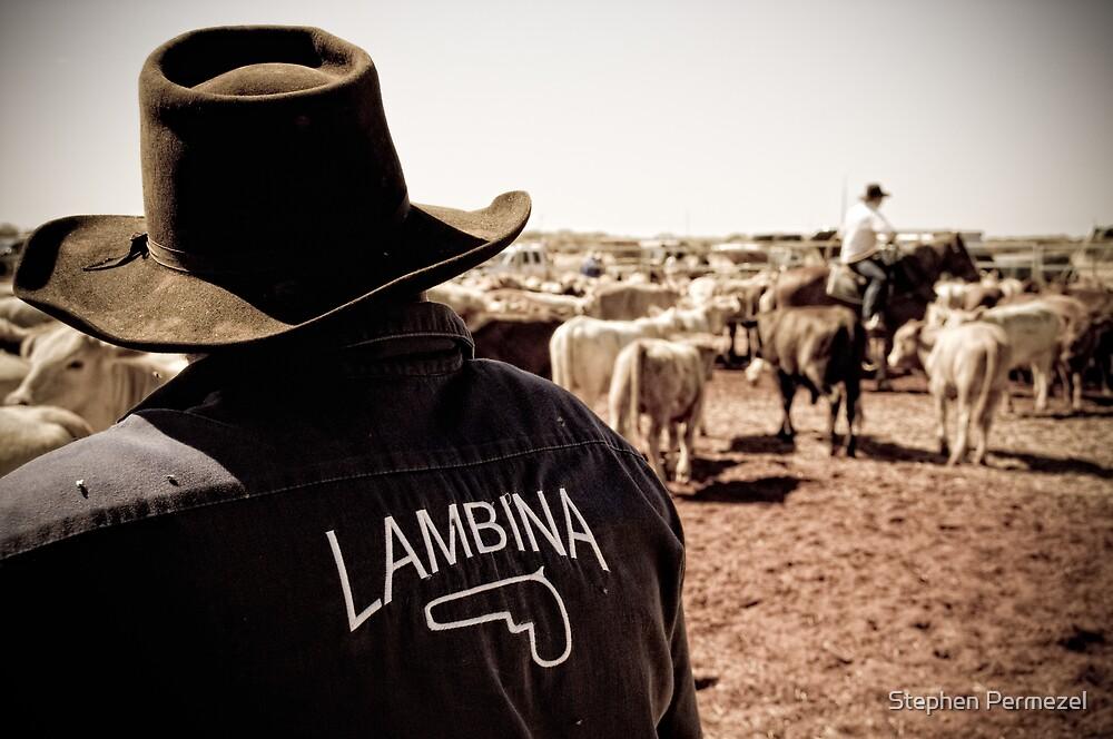 Team Lambina - Marla, South Australia by Stephen Permezel