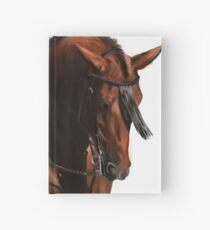 Spanish Stallion Hardcover Journal