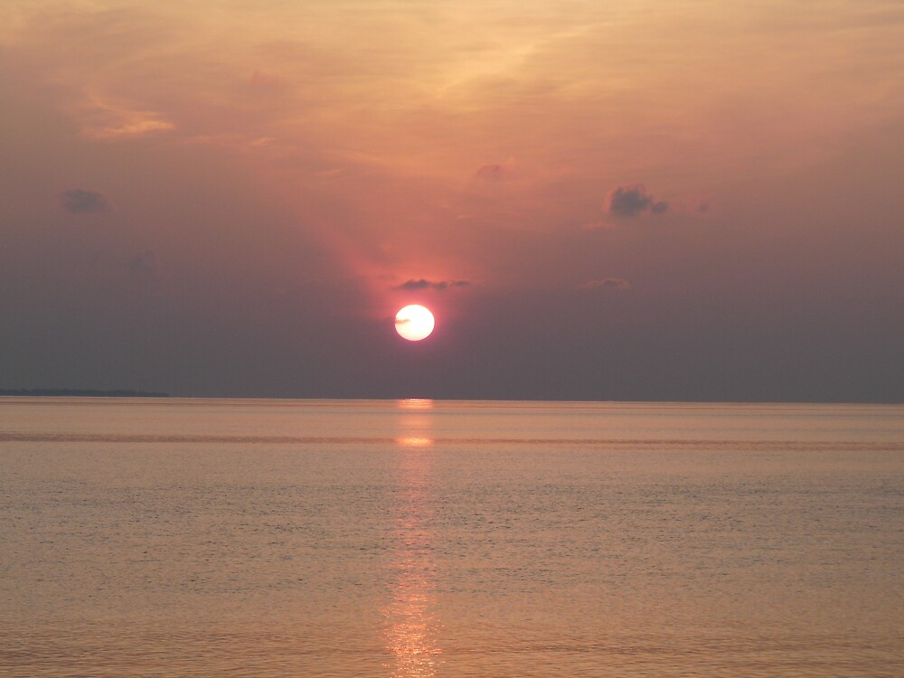 Pink Sunrise # 2 by presbi