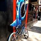 Shark on Spring St. by Ashleigh Robb