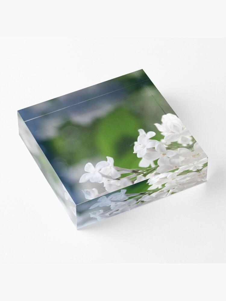 Alternate view of Spring Acrylic Block