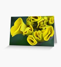 Mellow Yellow Marigold Greeting Card