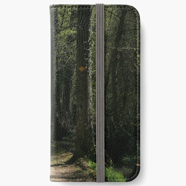 The path iPhone Wallet