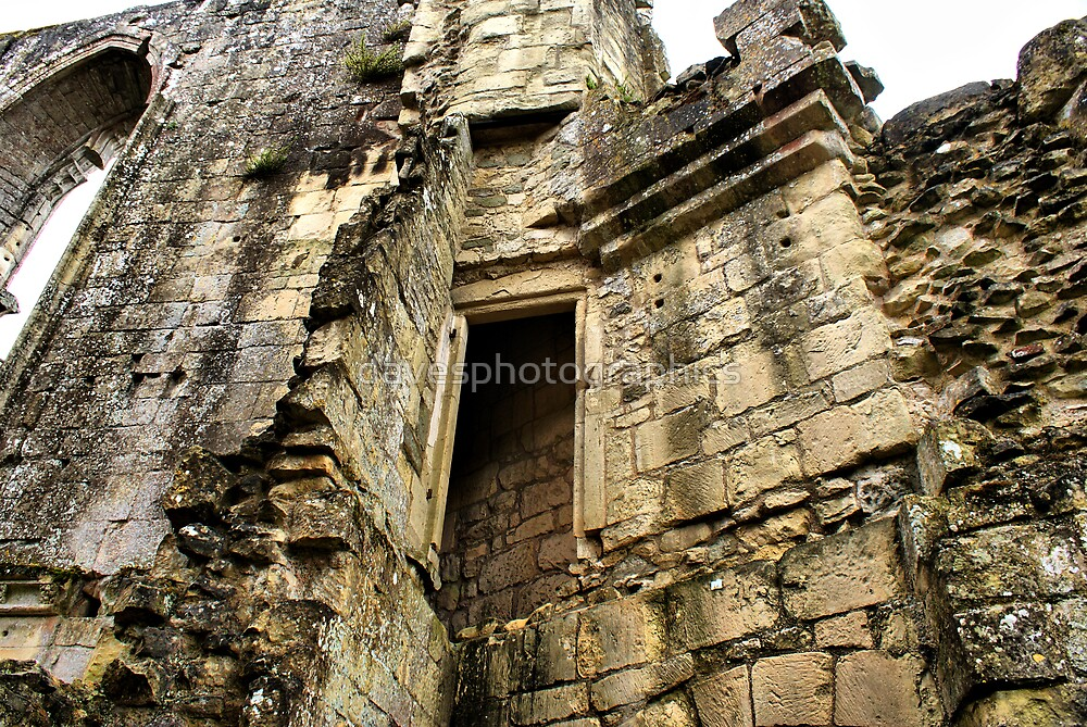 Old Wardour Castle 09 by davesphotographics