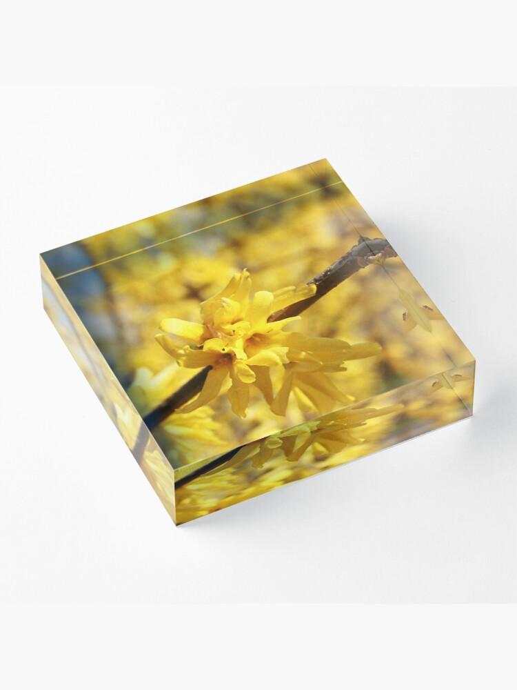 Alternate view of Light Acrylic Block